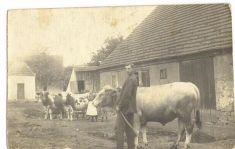 náves - pastouška - počátek 20.stol
